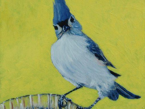 LAST MARKET OF SUMMER – 24 BIRD SALUTE